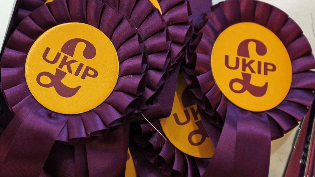 Ukip Purple badges