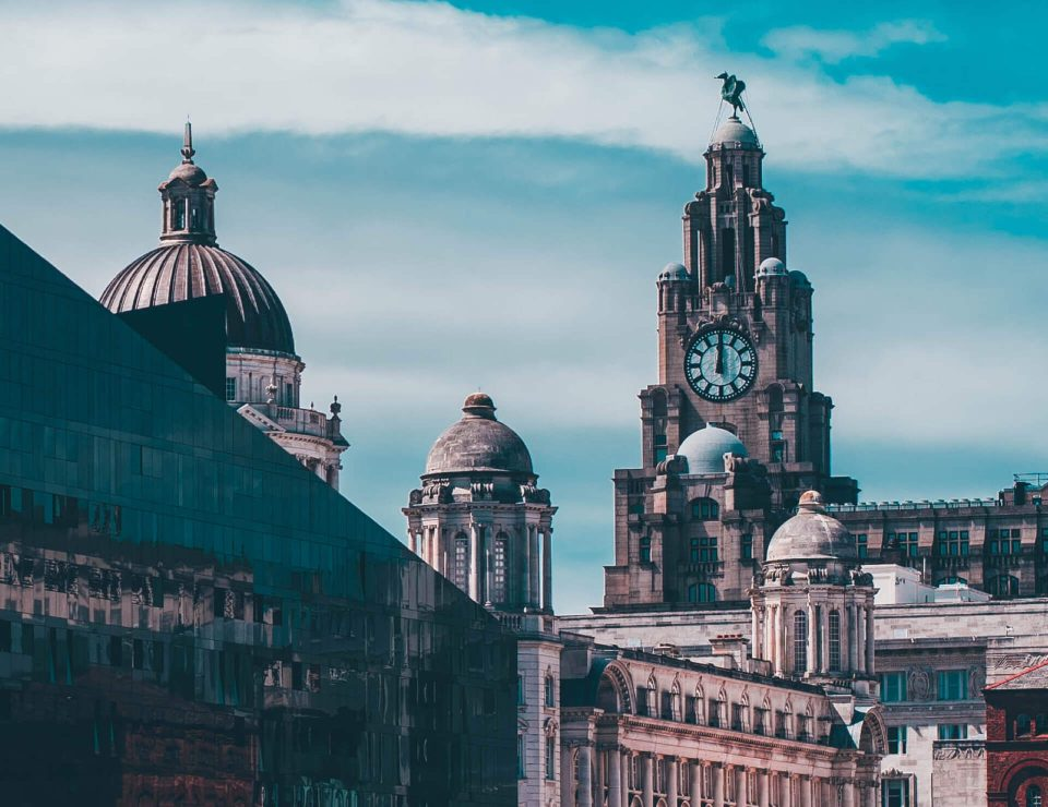 Image of Liver Building